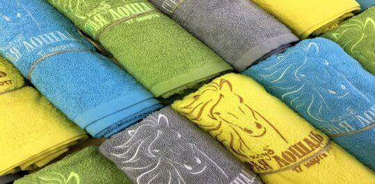Преимущества и недостатки логотипа гостиницы на полотенце